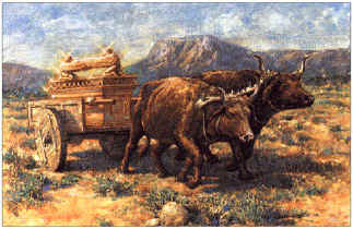 Cowspullingcart.jpg