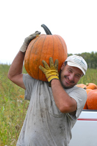 Man carrying pumpkin on his shoulder