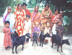A family and their goats