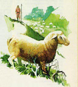 Shepher with sheep, by Ken Tunell