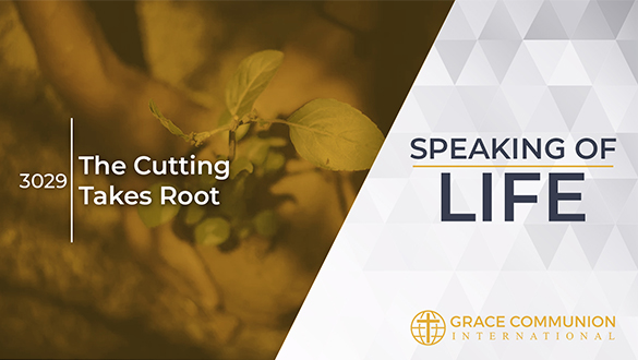 Speaking Of Life 3029 | The...